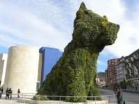 guia bilbao 1 puppy042 200x150 Puppy