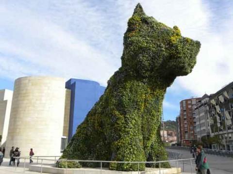guia bilbao 1 puppy042 480x359 Puppy