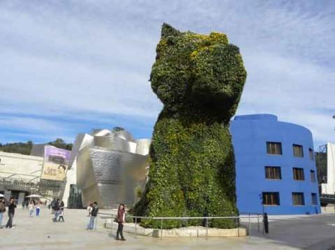 guia bilbao 1 puppy061 480x359 Puppy