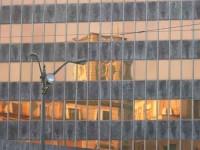 guia bilbao 32 BBVA4 200x150 Torre del Banco de Vizcaya (BBVA)
